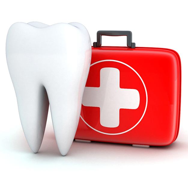 First aid kit for a dental emergency and a molar.